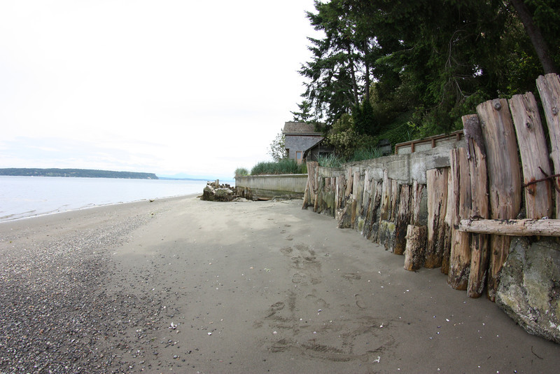 The Cleary Project, Saratoga Passage, Whidbey Island. This project entailed removing the worlds ugliest seawall and replacing it with a semi-soft shore protection system. This approach combines hard armoring with anchored logs, vegetation and beach nourishment.