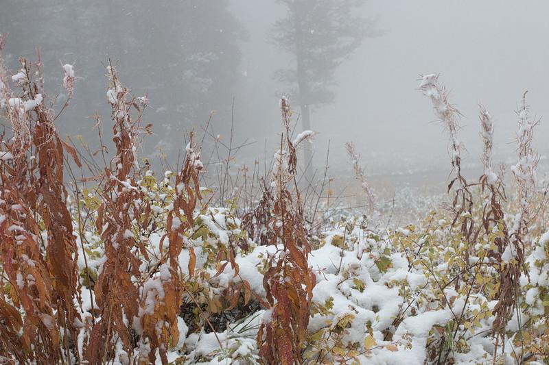 Wyoming 2013-076-Edit