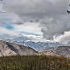 Teton range from Snow King Mountain path