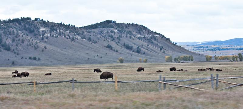 Wyoming 2013-024-Edit
