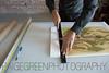 paigegreenXeroGriffin11152015-115