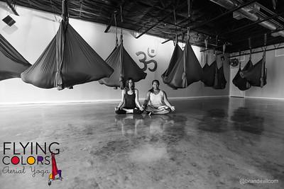 Flying Colors Aerial Yoga. Jacksonville Florida