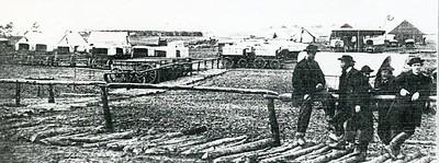 Ambulances and Medical Supply Wagons, C. 1864 (4347)
