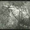Eagle Furnace (08443)