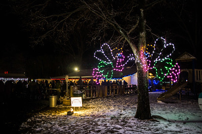 Holiday Lights 2019-17