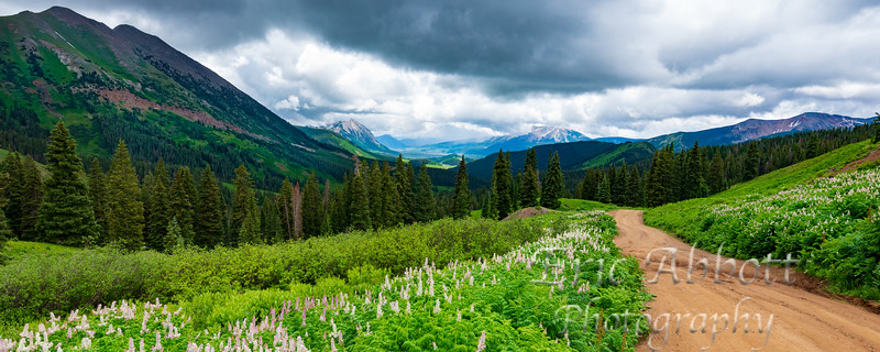 Crested Butte 142