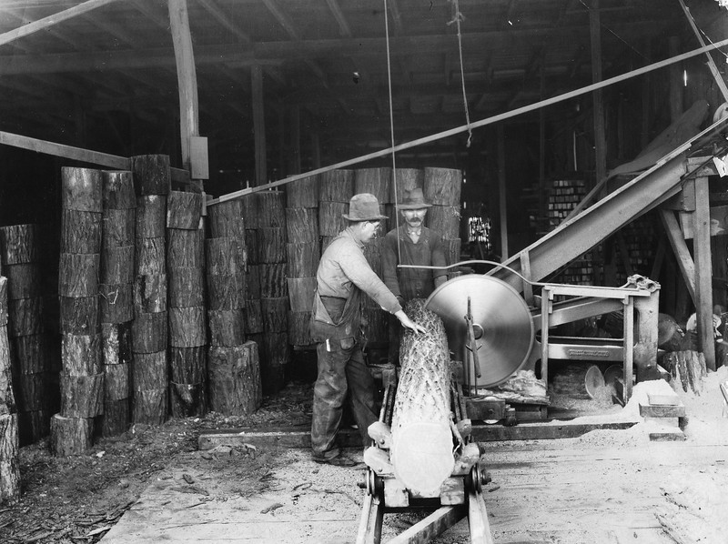 Cutting Logs for Thornhill Wagon Company (03092)