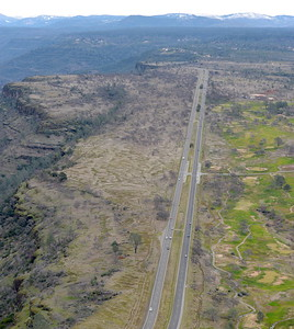 seen during a PG&E  flight looking for drought-stricken trees in the Oroville foothills Wednesday, Jan. 25, 2017. (Bill Husa -- Enterprise-Record)