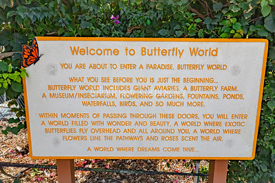 Butterfly World Coconut Creek Florida, FL, US, USA