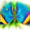 airbrush-indian-leaf-bflyh-DSC09920
