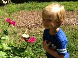 Mimi's grandson in the butterfly garden