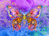Blue Butterfly Floral