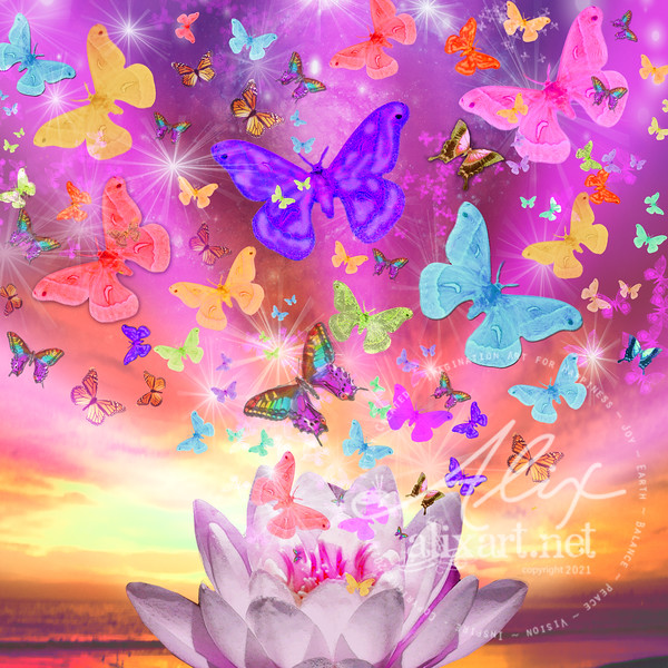 1celestial_butterfly_squarevariation