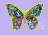 butterflyrainforest2_alixversion
