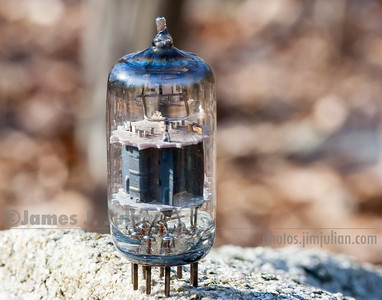 Vacuum Tube Lost in Nature 2