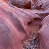 Pink Canyon - Valley of Fire State Park - Nevada