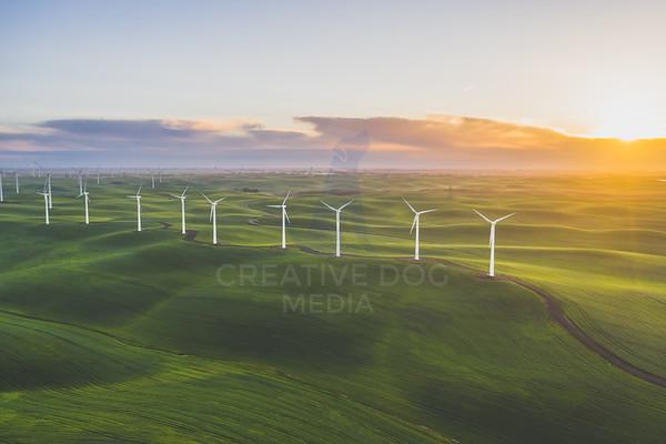 Solano Wind Farm
