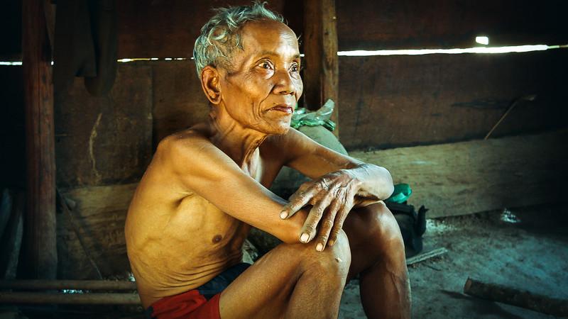 Old Vietnamese Woodsman