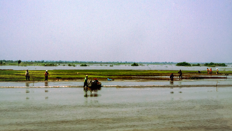 Farmlands of the Tonle Sap