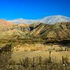 Andean Desert Ranch