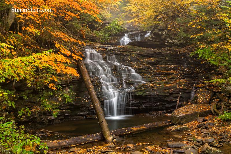 Mohican Falls - Ricketts Glen - Pennsylvania