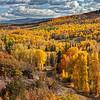 Aspen Vista - Flat Tops CR19 - Pagoda, Colorado
