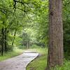 River Legacy Trail