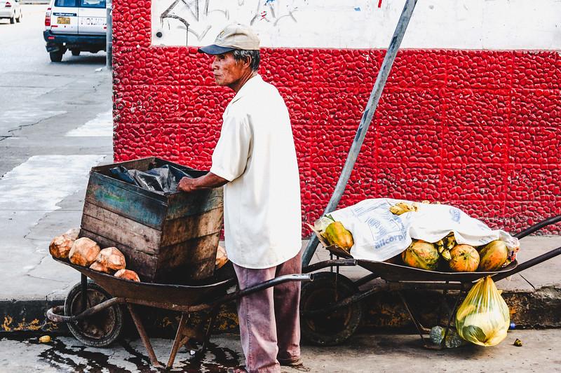Peruvian Fruit Vendor