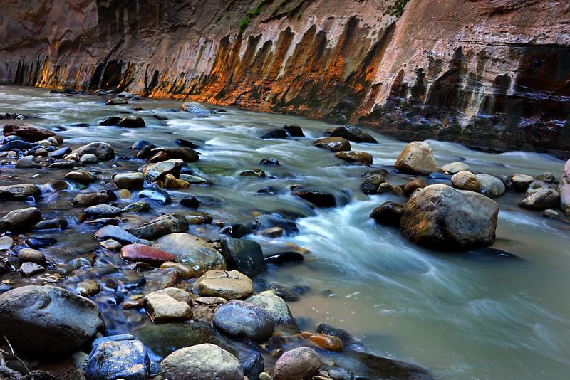 Zion River Rocks