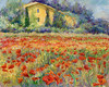 St. Remy Poppies 5x7 Giclee (1 available)