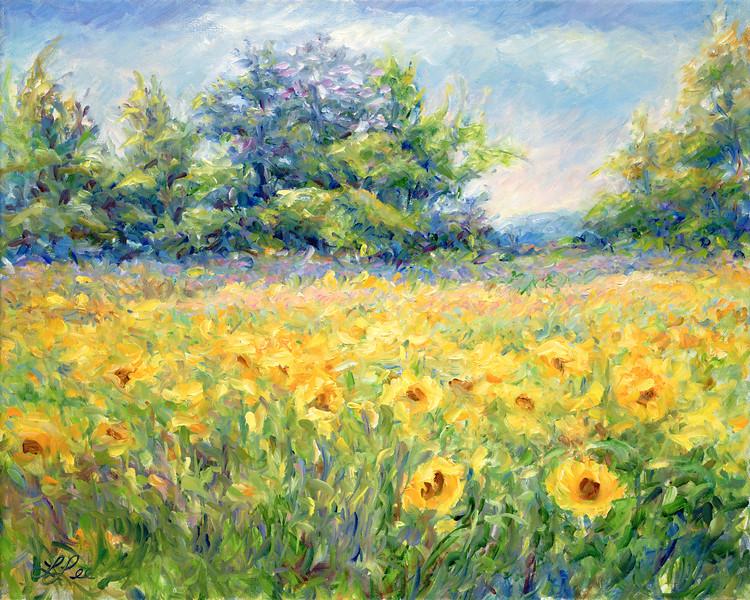 Summer Sun - Provence