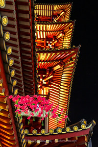 The glowing under-lit roof of the Buddha Tooth Relic Temple was a delight to capture