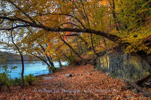 Secret Autumn Spot