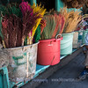 Old Man Selling Colorful Finds