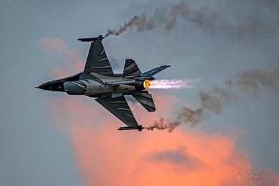 """F-16AM Fighting Falcon """"Dark Falcon"""""""