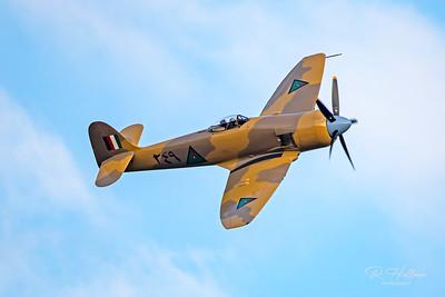 """Hawker Sea Fury """"Baghdad Fury"""""""