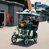 Crocodile Bike I