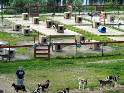 Training kennels for 4-time Alaska Iditarod race winner Susan Butcher.