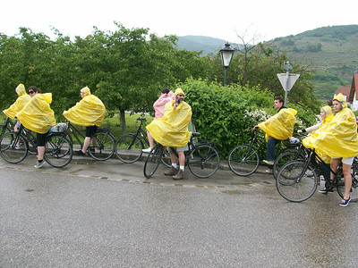 It rained early in the morning on our bike tour but it didn't dampen anyone's enthusiasm. Bike   Wine   Rain = No Problem!