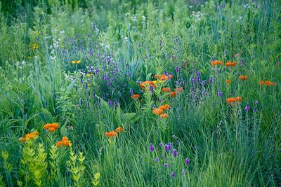 Prairieland Fairytales