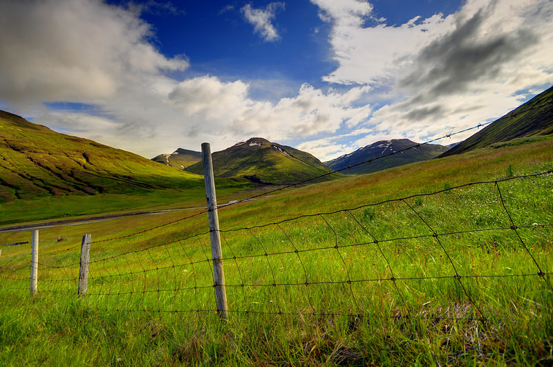 A fenceline through a grassy meadow in Northeast Iceland.