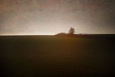 Up Baden Hill, Avebury Circle and Henge, WIltshire