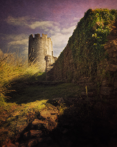 Castle Tower and Walls