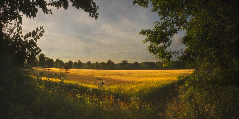 Holt, Wiltshire, Great Britain