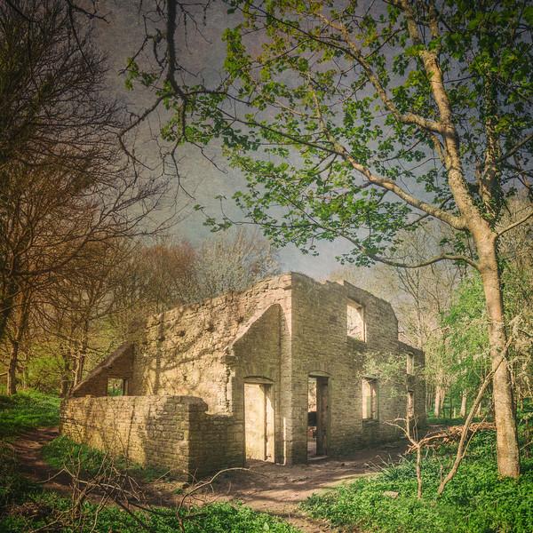 Tyneham Village, Dorset, UK. Todd Atteberry, artist