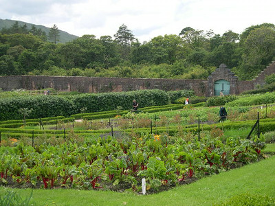 The formal gardens at Kylemore Abbey.