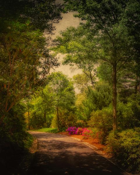 Gardens At Bayard Cutting Arboretum