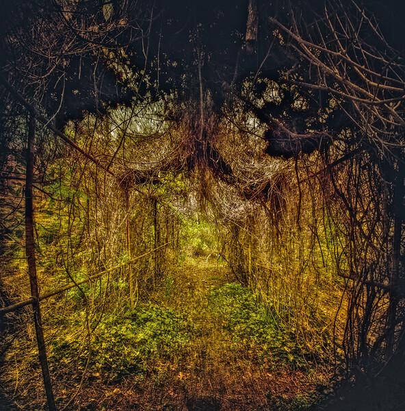 Welwyn Gardens, Glen Cove, Suffolk County, Long Island, New York