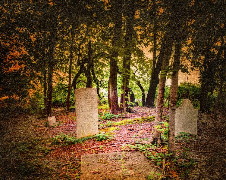 Graveyard of the Matthew Smith family. St. James, Suffolk County, Long Island, New York