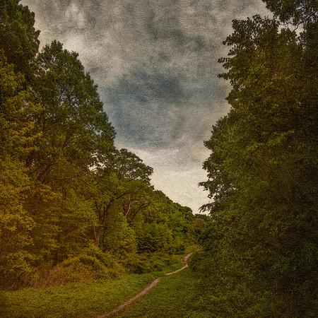 Long Island Landscape, Makamah Nature Preserve, (Crab Meadow Park), West Fort Salonga,  Suffolk County, Long Island, New York
